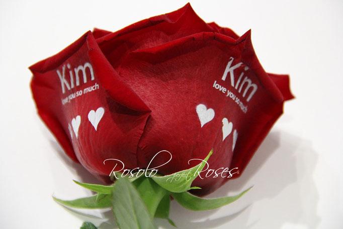 https://www.rosolo.ch/e-boutique/#!/SAINT-VALENTIN-Grande-rose-rouge-imprimée/p/43827946