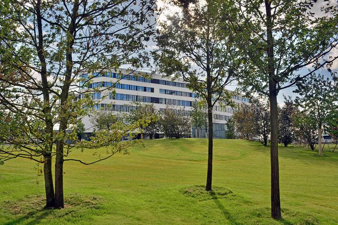 Blick vom Lohsepark zur HafenCity Universität