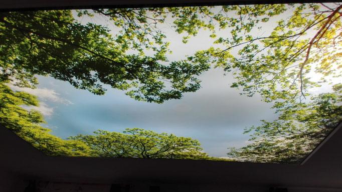 Himmel / Fotodruck Foto:  MERLIN