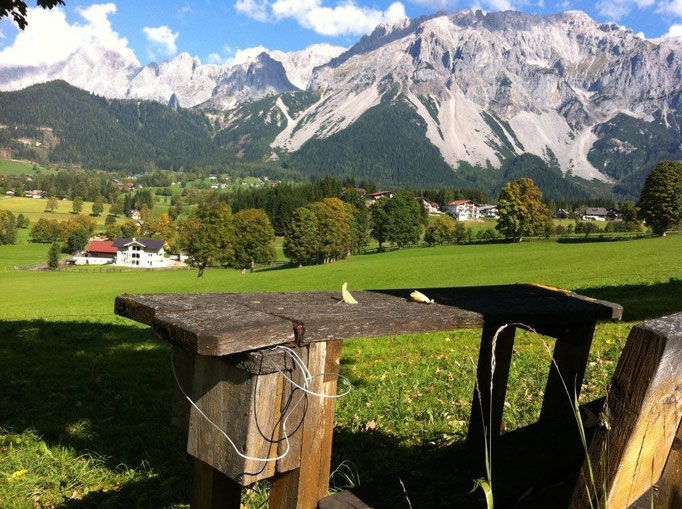 Alpine bench Shooting location Austria