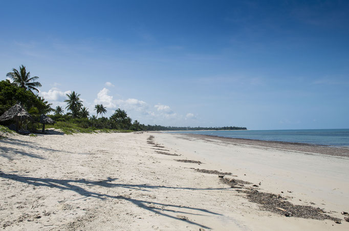 Pangani Strand, Tansania