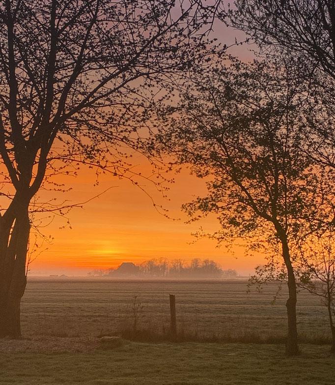 Morgenlicht fotografiert Nikon Z6 und Z7