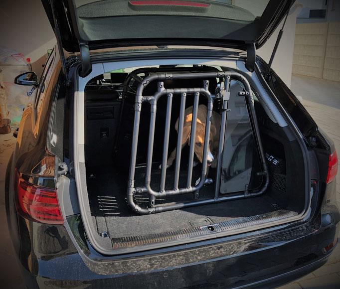 Hundebox M 1.1 für Audi A4 Avant