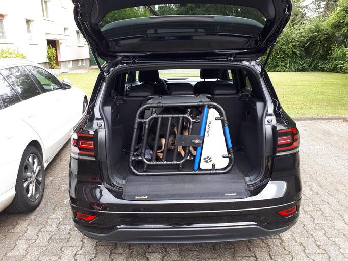 Hundebox +M VW T-Cross
