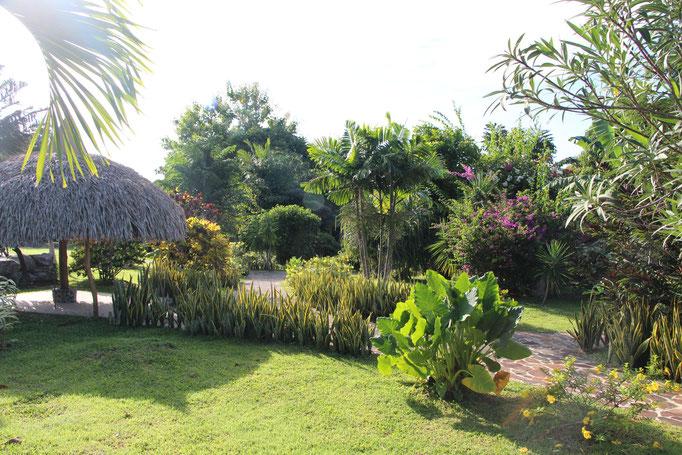 Jardin Luxuriant Los Colibris