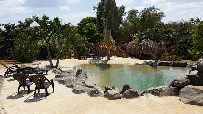 Piscine Naturelle Hotel Panama