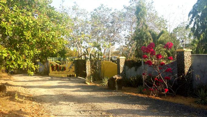 Jardin cabanas los colibris