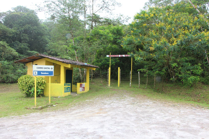 Sentier randonnée au Panama El Valle