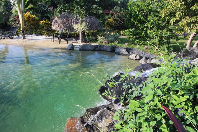 Piscine de l'hotel Cabanas los Colibris