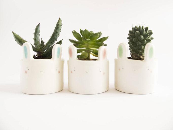 Pots pour plantes en forme de lapin, 39$