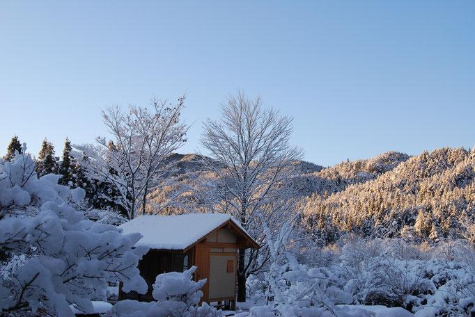 冬 冬の浮き景色