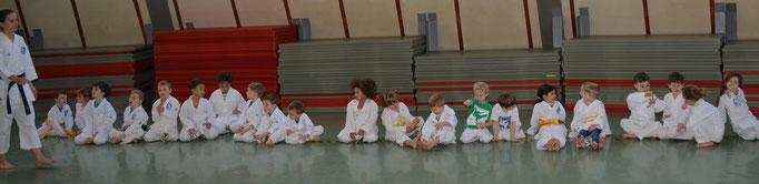Disziplin und Ordnung Karateprofi, little tigers, 3-6 Jahre PAHO
