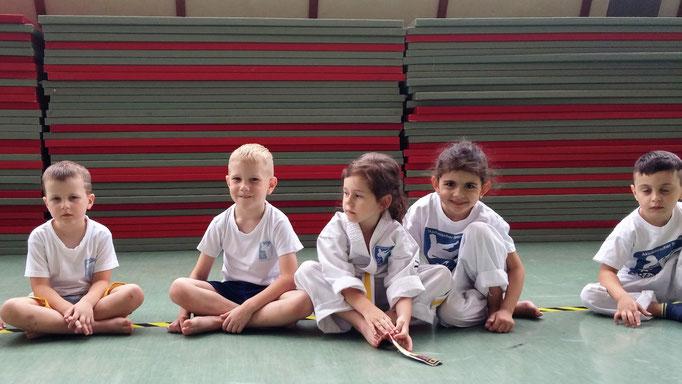 Kampfkunst, hier 3 und 4 Jahre: mit Sport und Spaß zu Ordnung und Disziplin für Kinder 3-6 Jahre