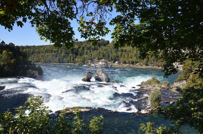Tosender Rheinfall