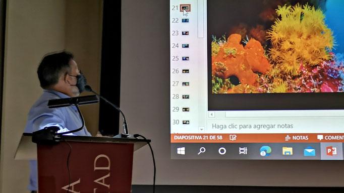 D. Javier Ortíz comenta una de las fotografías