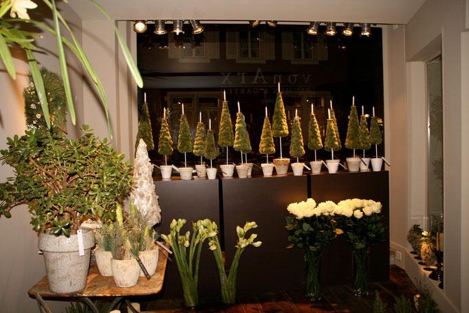 Adventsausstellung 2006 von Arx Blumen & Garten  |  Olten