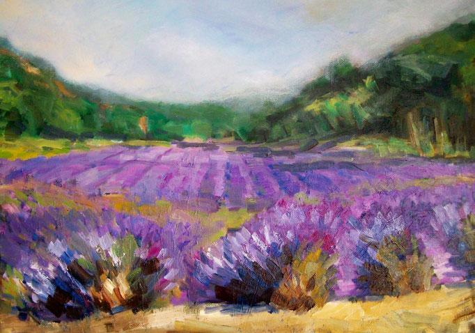 Der Duft des Lavendels       Öl_Lwd.70x50cm