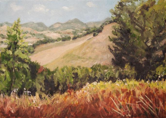 Landscape in Umbria,Öl_Lwd.50x70cm