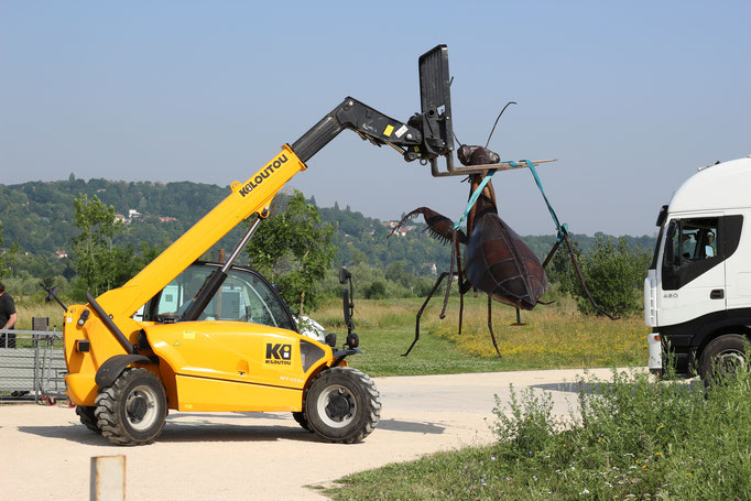 Monumental Insect Sculpture °2019 @Vanorbeek