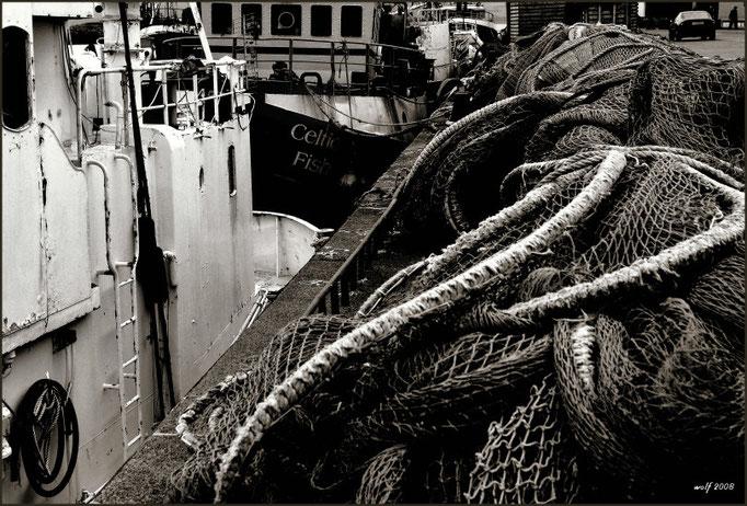 Dingle Hafen, Dingle Peninsula