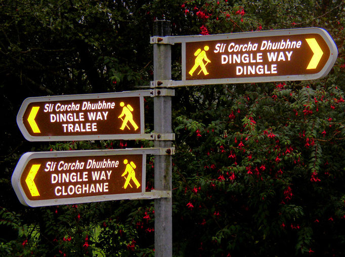 Beginn des Dingle Way in Camp an der Tralee Bay