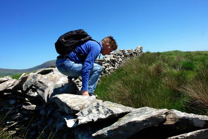 Feldmauernhopping, Dingle Peninsula