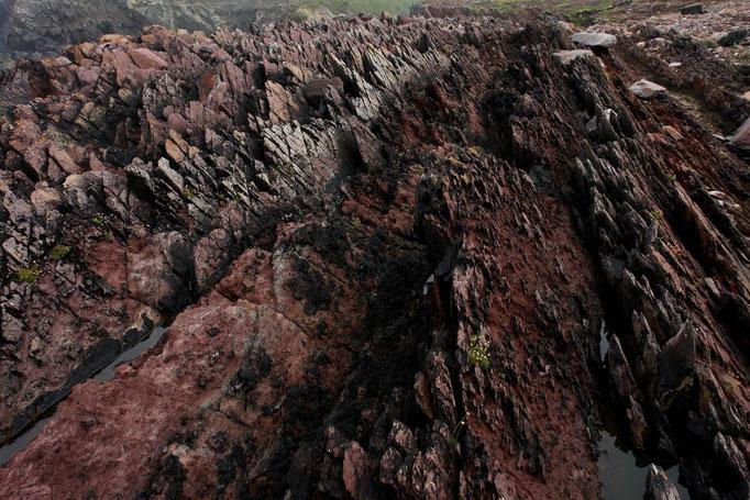 Zerklüftete Küste bei Clogher, Westküste Dingle