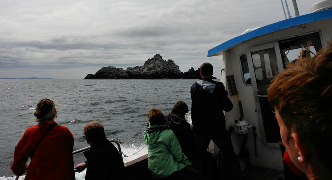 Die Skelligs sind in Sicht