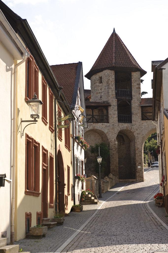 Altstadt Kirchheimbolanden