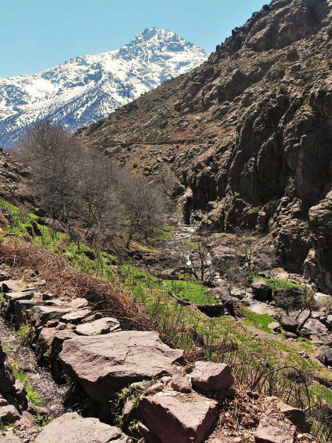A trek in the Atlas mountains