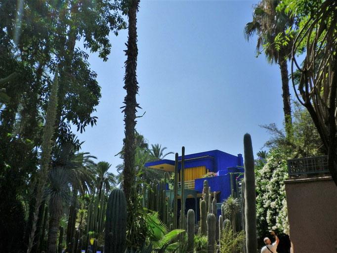 Le jardin Majorelle