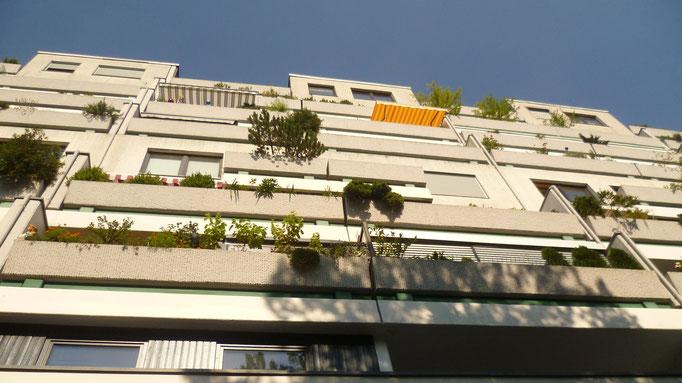 Das Terrassenhaus - Ansichtssache