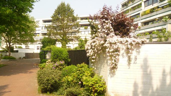 Ansicht Terrassenhaus Süd- / Westseite
