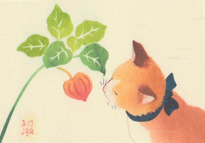 貼り絵・なごみ猫・ほおずき