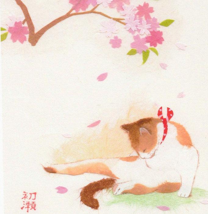 貼り絵・なごみ猫・桜の下より