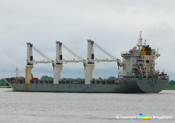 Mehrzweck-/ Schwergutfrachter CHIPOLBROK PACIFIC auf der Elbe 24.06.2018