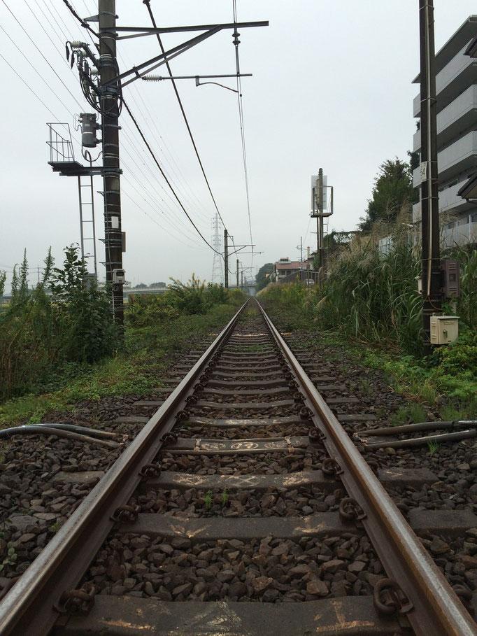 近くを走る相模線の線路、単線てなんかいいです
