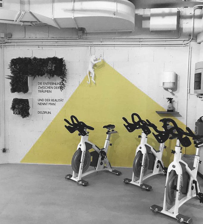 Innenarchitektur Fitnessstudio, Mainz