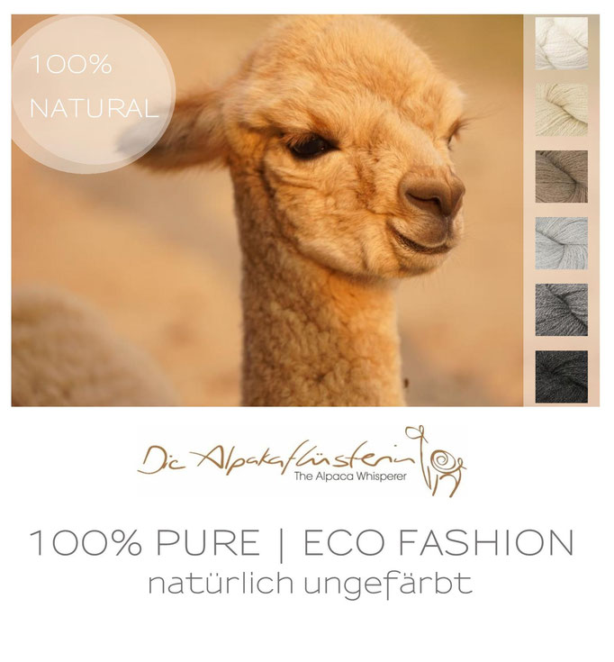 Alpaka Wolle ungefärbt, ungefärbtes Alpaka Garn, Alpaka Decken natur,