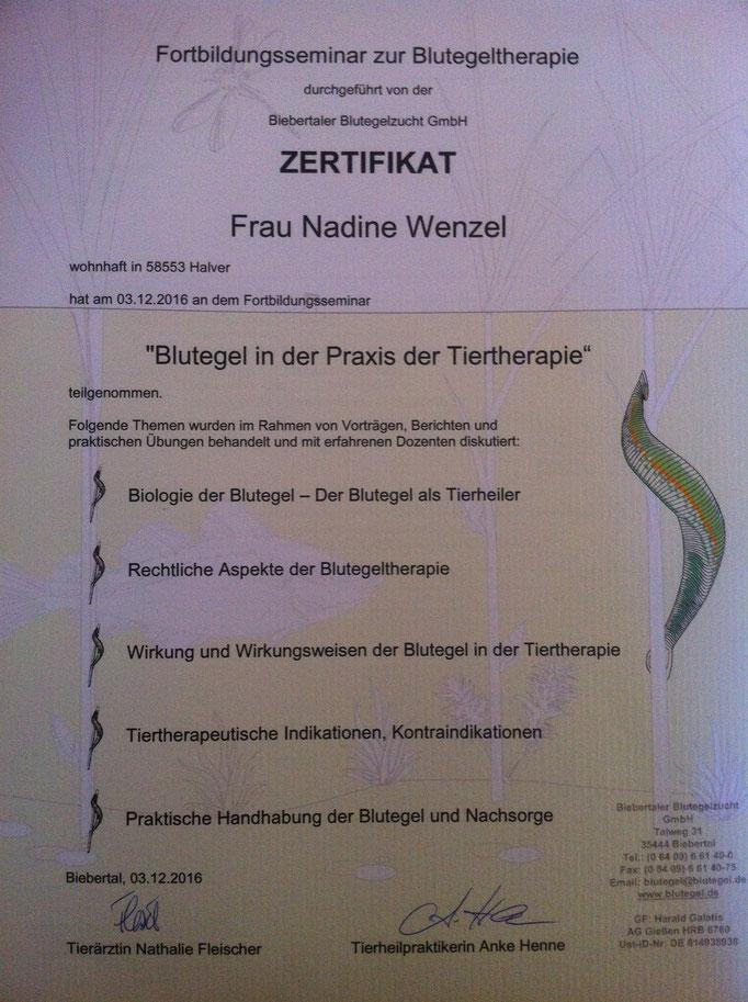 Nadine Wenzel Tierphysiotherapie, www.nw-tierphysiotherapie.de, Blutegeltherapie