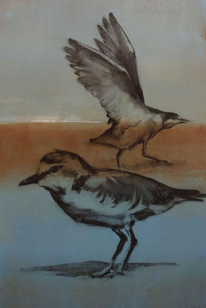 """Bird Talk"" monotype/charcoal, 24x18, 2018, $700"