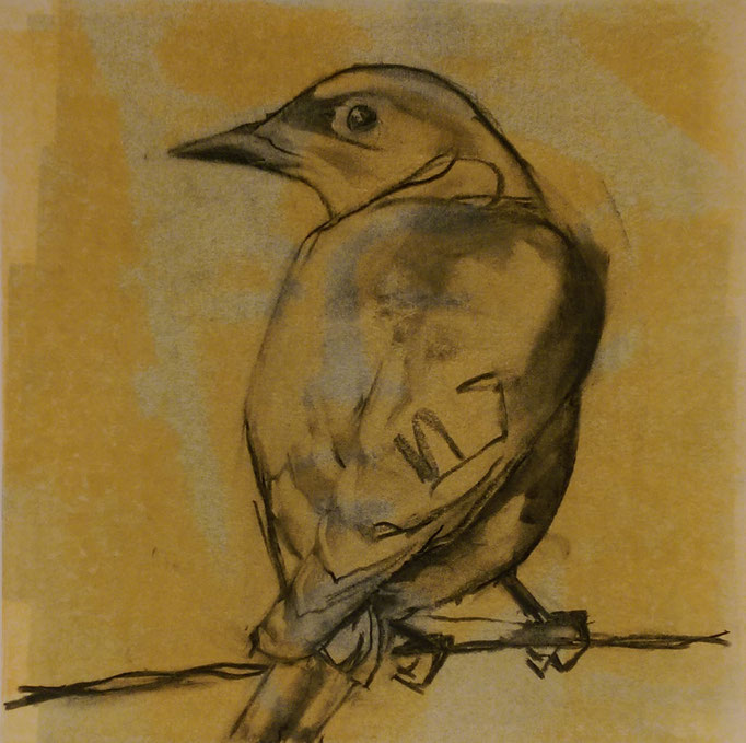 """Bird on a Wire"" 16x16, monotype and charcoal, SOLD"