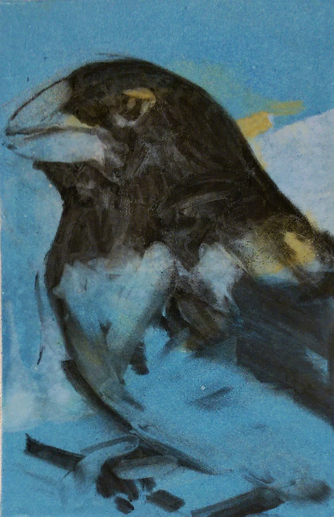 """Grosbeak"" 14x11, monotype and charcoal, $350"