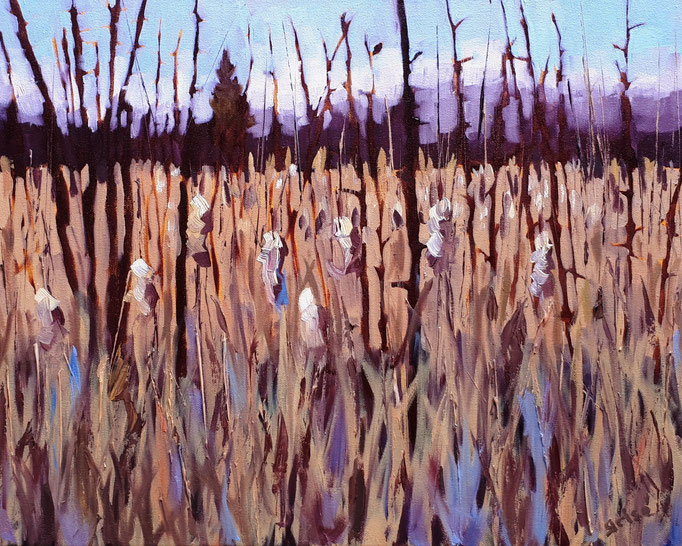 Bear Creek Wetlands    18x14 oil on canvas.  Gold Crackle & Black floater frame.    600.00 CA    To purchase or view, please contact me.