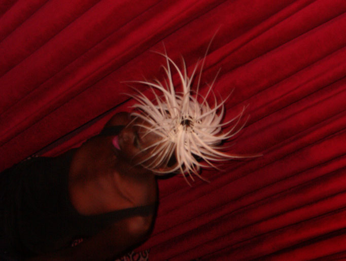 Alec Wek mit der Warhol Wig