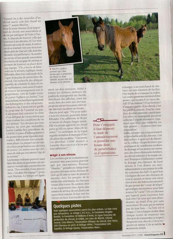 Cheval Magasine - Novembre 2011 - Page 2/2