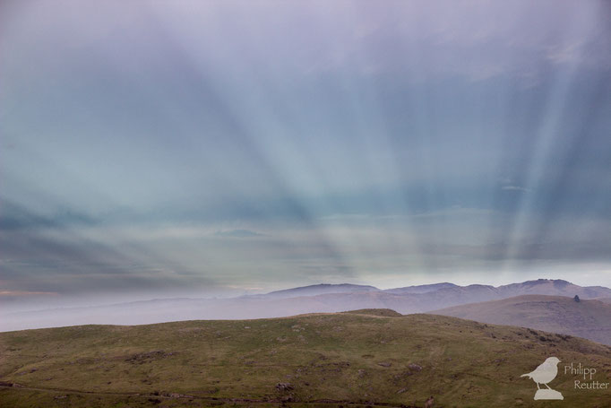 Sonnenstrahlen über Christchurch / Neuseeland