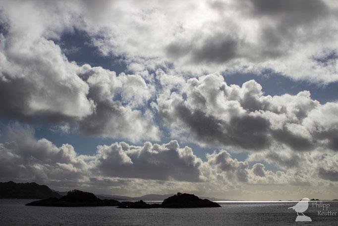 Cumulus über der Nordsee