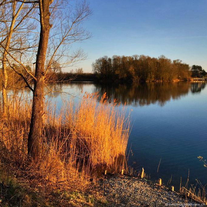 Schlosssee - Salem
