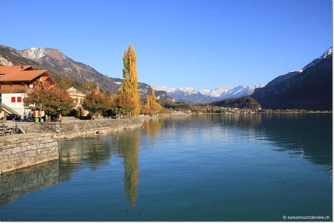 fahren wir dem Brienzersee entlang zurück nach Interlaken.